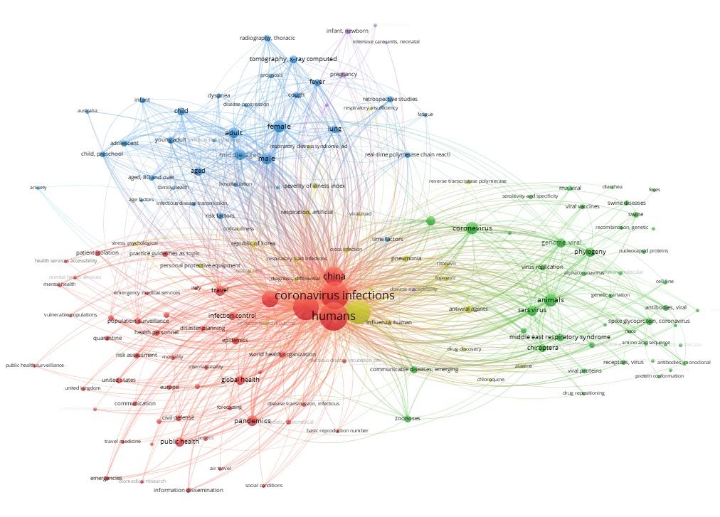 COVID-19, CORONAVIRUS PANDEMIC: aproximación bibliométrica y revisión de los resultados